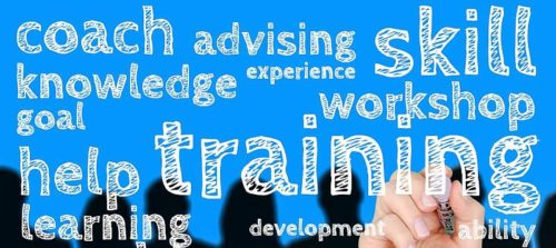 Training and coaching services written on transparent board